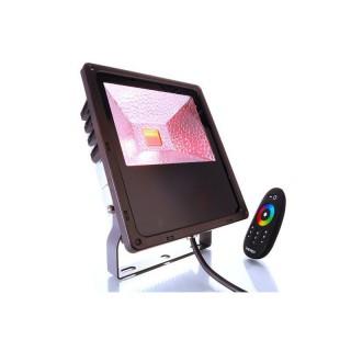 imm-professional.de KAPEGO RF Outdoor Fluter RGB 60W 230V AC/ 50Hz, Abstrahlwinkel 120°, inkl. Touch-Funkfernbedienung