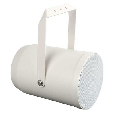 """DAP-Audio PSU-620P 20 Watt 6"""" Unidirectional projector speaker"""