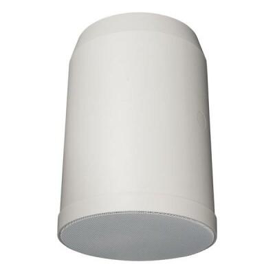 """DAP-Audio HS-620P 20W 6"""" Hanging Speaker"""