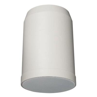 """DAP-Audio HS-510P 10W 5"""" Hanging Speaker"""