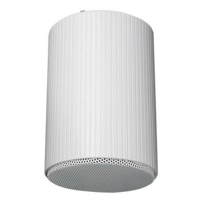 """DAP-Audio HS-510M 10W 5"""" Hanging Speaker"""