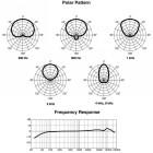Marantz Pro Audio Scope SG-17P Professionelles Richtrohrmikrofon